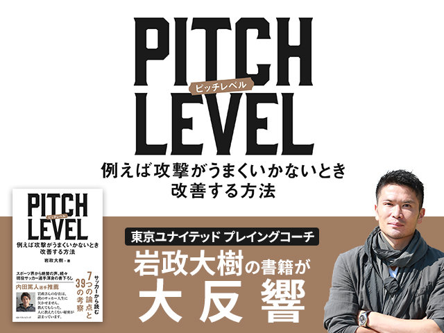 PITCH LEVEL